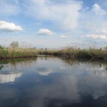 River Emajõgi