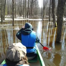 "The flood ""fifth"" season in Soomaa NP. You can canoe in the woods."