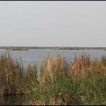 Le lac Tshangalele qui est dans le bassin de la lufira