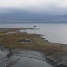 Dunøyane