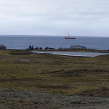 Nordre Isøya