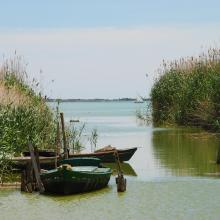 L'Albufera. Barcas tradicionales de pesca (albuferencs)