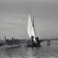 L'Albufera. Imagen de los años 50 de navegación con vela latina