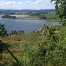 Ilene nature reserve