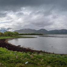 Small bay in the Southwestern part of the Reserve. Risøybukta in the background.