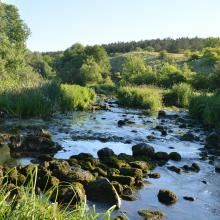 Murafa River