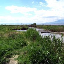 Kakhanov Canal
