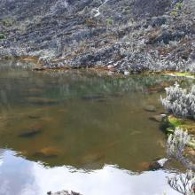 Irene Lakes at 4900m