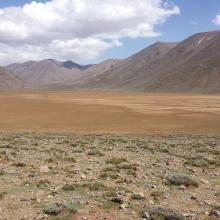 Lac temporaire d'Izourar : pelouse de montagne, à l'amont de l'Assif des Aït Bou Guemmaz