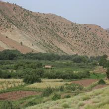 Assif Aït Bou Guemmaz : Bâti rural et Arboriculture traditionnels