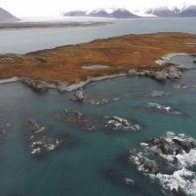 Sørkappøya