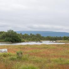 Tårstad river in Kjerkvatnet nature reserve