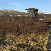 Bird Tower in Fokstumyra
