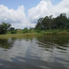 Le lac Toho