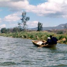 """Al menos 60 miembros de las cooperativas """"Pescadores de Gómez Farías"""" y """"Pescadores del Nevado"""" capturan al día cuando menos dos toneladas de carpa y tilapia en la Laguna de Zapotlán, principalmente, y en menor volumen lobina y charal."""