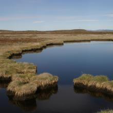Pond on the island Innersuatsiaq.