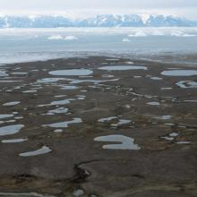 The Tyskit Nunaat-area with many ponds and breeding habitat for Sabines Gull.