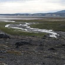 The tidal mudflats in the bay.