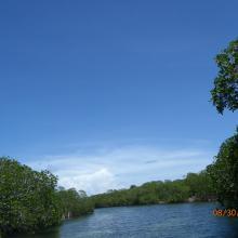 Canal del Humedal de Santa Elena